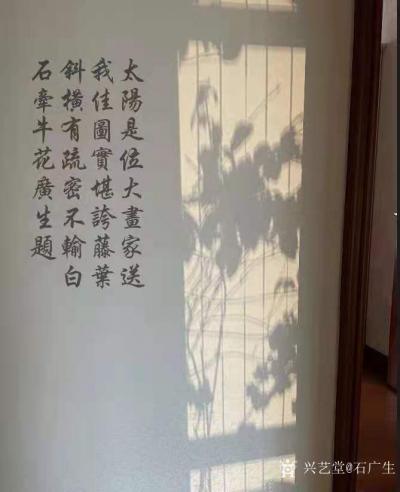 石广生日记-阳光国画:也许是天公感觉我墙壁太空,缺乏装饰,每天都让阳光给我送来一幅画,并直接【图2】