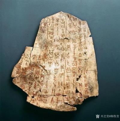杨牧青日记-请辨识:那个是伪刻或仿刻的牛肩胛骨刻辞的殷墟甲骨片? 这是多种书册都收录的影印【图1】