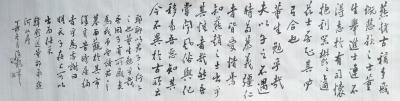 张海龙兴艺空间精选封面动态图片