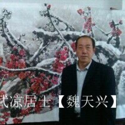 武凉居士【魏天兴】兴艺空间精选封面动态图片
