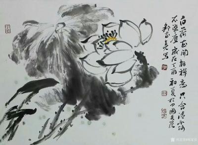 邹家亮兴艺空间精选封面动态图片
